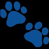 TabiCat status